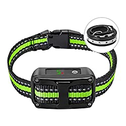 Top 5 Best Bark Collars for Small and Large Dogs 2020