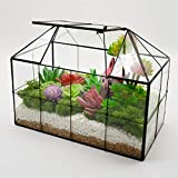 "Luckyslife Succulent Geometric Glass Terrarium - Tabletop House Shape Clear Glass Plant Terrariums 9.8""X7.9""X5.9"""