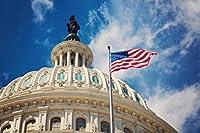 ワシントン州旗のあるアメリカ合衆国議会議事堂のドーム 300枚の木のパズル脳が美しいアクセサリーに挑戦します。