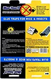 Blue-Touch Mouse Glue Traps, Peanut Butter Scented Best glue traps glue boards for mice, insects and crawling pests. 8.5x5.5 inches, 1.1 OZ – 100 Traps/Box