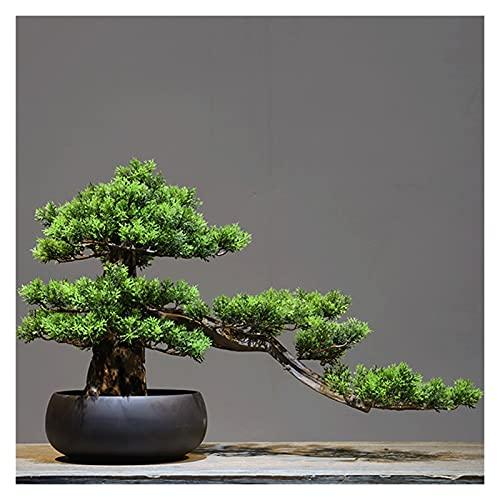Artificial Bonsai Adorno de pino de bienvenida artificial, ornamento de 13 pulgadas Zen Micro Paisaje, árboles falsos para la sala de conferencias Hall Rack (con cepillo de limpieza) Plantas Macetas D