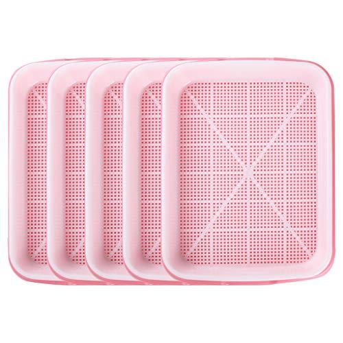 Ymeibe Keim-Tablett für Saatgut, BPA-frei, mit Ablauflöchern, ideal für Zuhause, Garten, Büro, 5 Stück (Pink)
