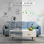 HomeZens Portable Plug in Air Purifier for Viruses and Bacteria, UV-C Light Sanitizer Eliminate and Sanitize Germs & Odor, Keep Air Clean for Bedroom, Kitchen, Bathroom, Pet Area, Nursery, Small Rooms 11 🍃 UV air purifiers are designed to use UV-C light to inactivate airborne pathogens and microorganisms like mold, bacteria and viruses. Powerful UV-C light can kill up to 99.9% of germs and bacteria without any additional liquid or chemicals. 🍃 This 7 inch small wall pluggable air purifier is perfect for the kitchen, litter box room, bathroom, or children's room. Just plug it into any 120V outlet and 180 degrees rotatable plug for a different angle, the light will turn on and work, effectively sanitize a 10㎡ room it within 2h to get the best result. 🍃 UV light air purifiers disinfect the hard to reach corner of your room, The top cover for full protection design and fully sealed air purification design works in photolysis cavity, no radiation and ozone leakage, no need to be away from the room when working.