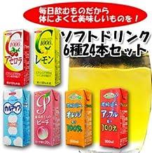 ソフトドリンク6種類24本セット(アセロラ・レモン・カルアップ・オレンジ100%・アップル100%・ピーチ)紙パックジュース/エルビー