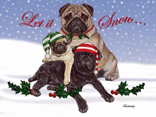 Pug Christmas Cards : 10 Holiday Cards with White Envelopes