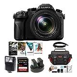 Panasonic LUMIX DMC-FZ2500 Digital Camera with 64GB Card and Accessory Bundle (7 Items)