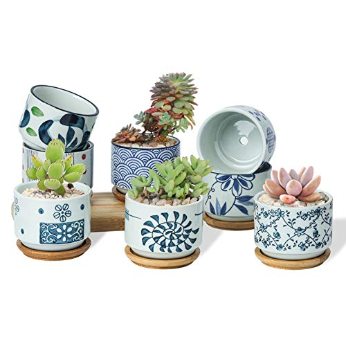 T4U 3 Inch Ceramic Succulent Planter Pots with Bamboo Tray Set of 8, Japanese Style Porcelain Handicraft as Gift for Mom Sister Aunt Best for Home Office Restaurant Table Desk Window Sill Decoration