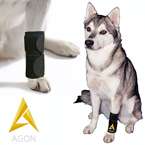 Agon Dog Canine Front Leg Brace Paw Compression Wraps With Protects Wounds Brace Heals and...