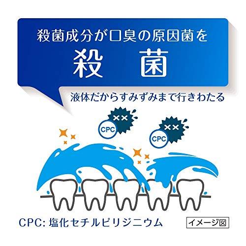 第一三共ヘルスケア薬用イオン洗口液ブレスラボマウスウォッシュシトラスミント450mL