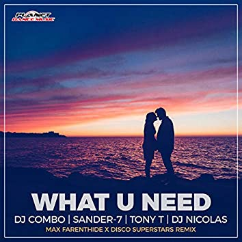 What U Need (Max Farenthide & Disco Superstars Remix)