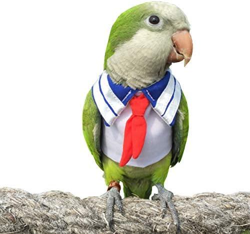 Parrot clothes