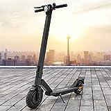ECD Germany City Explorer® E-Scooter Scooter Elektroroller Roller mit Straßenzulassung StVZO 250W - bis 20km/h - 30km Reichweite - klappbar - Vorder-und Rücklicht - Elektroscooter E-Roller Tretroller