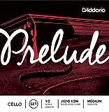 D'Addario Bowed Jeu de cordes pour violoncelle D'Addario...