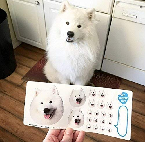 Custom Face Stickers, Photo Stickers, Stickers of Your Dog, Sampler Sheet - Pet Gift, Pet Stickers |