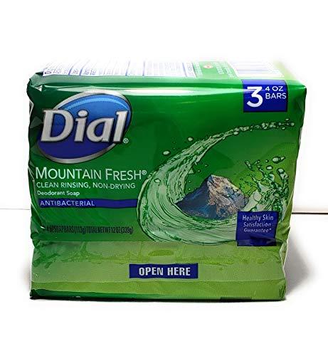 dial mountain fresh bar soap - 7