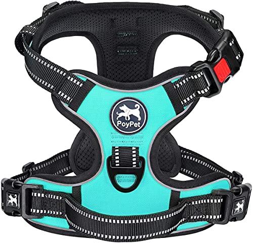 PoyPet Keine Pull Hundegeschirr Front Reflektierende Pet Weste für Hunde mit Einfache Kontrolle Griff und Rückseite perfekt für den täglichen Training, Walken, Running(Mint Blau,M)