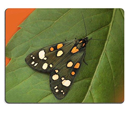 MSD Naturkautschuk Mousepad Bild-ID: 35168136Old Vintage Kommode Mustern auf die Tischdecke mit Old things auf einem schwarzen Hintergrund 2844