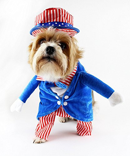 Uncle Sam Dog Costume With Arms
