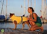EQDOG 382-772 Doggy Dry Hundebademantel, XXS, gelb - 6