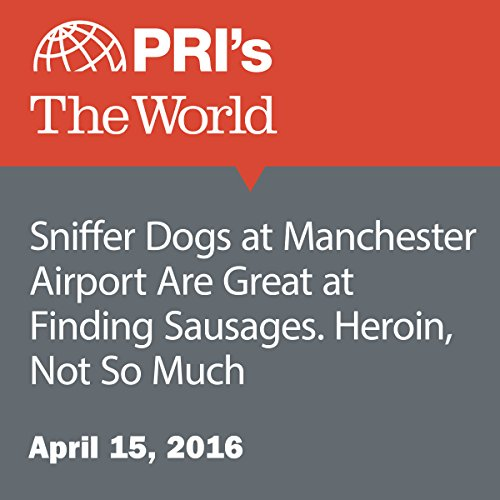 Sniffer Dogs at Manchester Airport Are Great at Finding Sausages. Heroin, Not So Much audiobook cover art