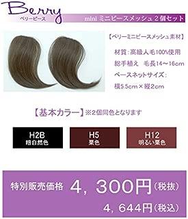 部分ウィッグプチシリーズ【おとくなメッシュ2点セット】A5ランク人毛100% 少し気になるつむじ、分け目の白髪や円形脱毛、薄毛隠しに! 簡単ボリュームアップに! ブリーチしてメッシュに! ウィッグ初心者に最適な手軽さ ライツフォル (H2B 黒自然色)