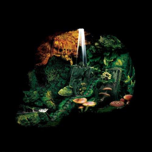 Iron Marsh [Vinyl LP]