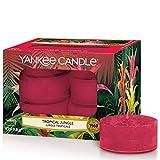 Yankee Candle Bougies Chauffe-Plat Parfumées | Jungle Tropicale | Boîte de 12 Lumignons