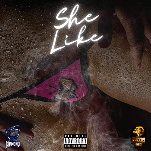 She Like (feat. CK Diamond) [Explicit]