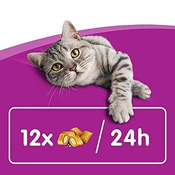 Whiskas Les Irrésistibles - Friandises au Saumon pour chat adulte, croquantes à l'extérieur et tendres à l'intérieur, 10 boîtes de 105g de récompenses