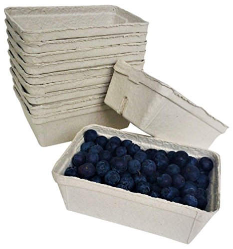 Nutley's Lot de 250 g en Fibre biodégradables Cagette avec des Fruits (Lot de 25)