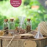 WeddingTree Reagenzglas mit Korken 60 x 11 ml - Kleine Glasflaschen mit Korken und Herz Anhänger - Als Gastgeschenk Hochzeitsdeko Gewürzgläser - 5