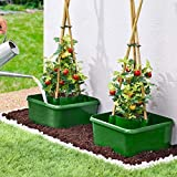 MyGardenGreen 3 pack Tomato planters self-watering garden Halo Pots