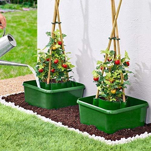 MyGardenGreen 3 pack Tomato planters self watering garden halo pots bean growing tub