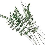 zunbo – Lote de 5 ramas de hojas de eucalipto para plantas artificiales falsas hojas de eucalipto para boda, centro de mesa casa (plata)