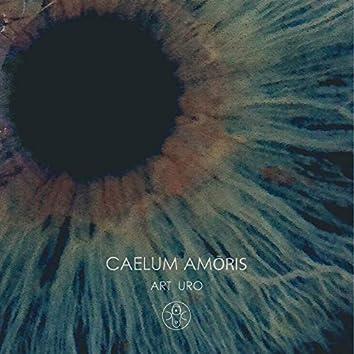 Caelum Amoris