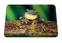 22cmx18cm マウスパッド (カエル明るい色ブランチモス) パターンカスタムの マウスパッド