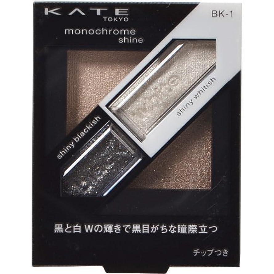 異常な砂の縫い目カネボウ ケイト モノクロームシャイン BK-1