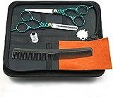 Kit de tijeras de corte de pelo, juego de tijeras de peluquería profesional, tijeras de adelgazamiento de acero inoxidable con peine de aseo para el hogar, verde