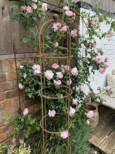 For Extra Large Round Metal Obelisk 2m, Rustic Climbing Plant Support, Rusty Garden Panami supplier for home & garden HOME DECORD