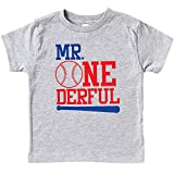 Olive Loves Apple Mr.One-Derful Baseball Bat 1st Birthday Shirt for Boys Sports Themed First Birthday Outfit Gray Short Sleeve Shirt