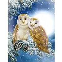 フクロウDIY5Dダイヤモンド絵画フルスクエアドリル動物ディアモント刺繡クロスステッチ樹脂家の装飾壁アート