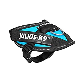 Julius-K9, 16IDC-AM-B2, IDC Powerharness, dog harness, Size: XL/2XS/Baby 2, Aquamarine