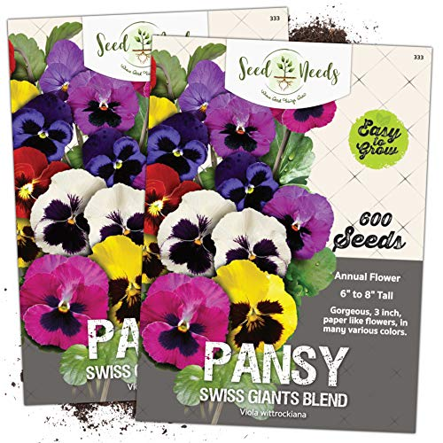 Seed Needs Swiss Giants Pansy Twin Pack of 600 Seeds Each