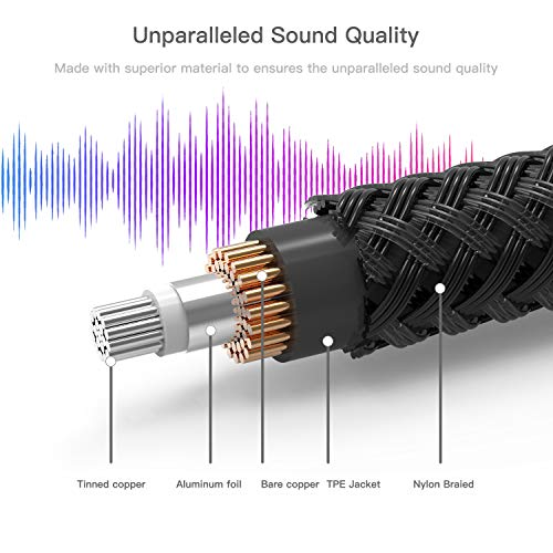 Syncwire Profesional Cable para Guitarra 3m (10ft) - Cable de jack guitarra 6.35mm (1/4