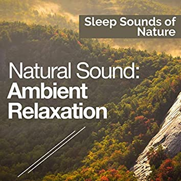 Natural Sound: Ambient Relaxation