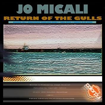Return Of The Gulls