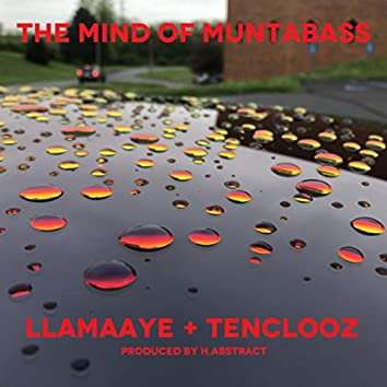 The Mind of Muntabass