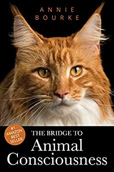 The Bridge To Animal Consciousness by [Annie Bourke]