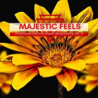 Majestic Feels - Peaceful Melodies For Healing And Relaxation, Vol. 10