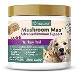 NaturVet – Mushroom Max Advanced Immune Support for Dogs – Strengthens Immunity & Supports Overall Health – Contains Turkey Tail, Reishi, Maitake & Shitake Mushrooms (60 Soft Chews)
